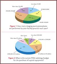 Capital-Equipment Purchasing in Radiology: Survey Results