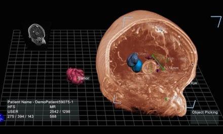 EchoPixel Launches Interactive Virtual Reality Platform