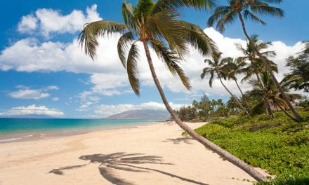 MR Solutions Installs Hawaii's First Preclinical MRI Imaging System