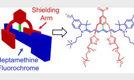 Stable and Functional Dyes for Near-Infrared Fluorescence Imaging