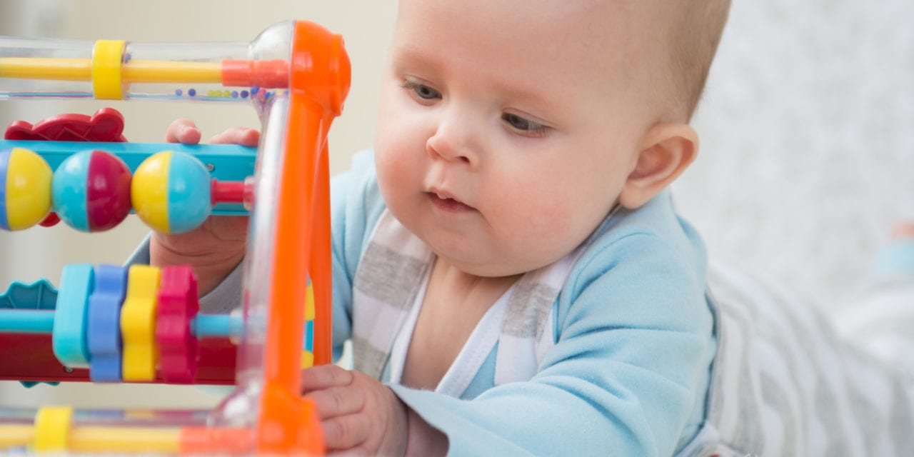 Imaging Shows Active Early Learning Shapes Adult Brain