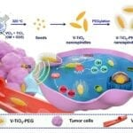 Tiny Nanospindles Enhance Use of Ultrasound to Fight Cancer