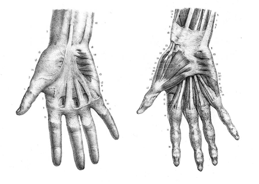 A 'Finger Phantom' to Train Treatment of Trigger Finger Using Ultrasound Guidance