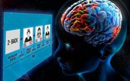 Largest-ever Preadolescent Brain Activation Study Reveals Cognitive Function Maps